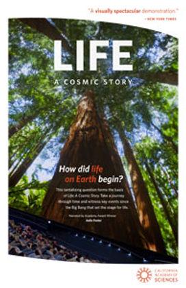 life---a-cosmic-story.jpg