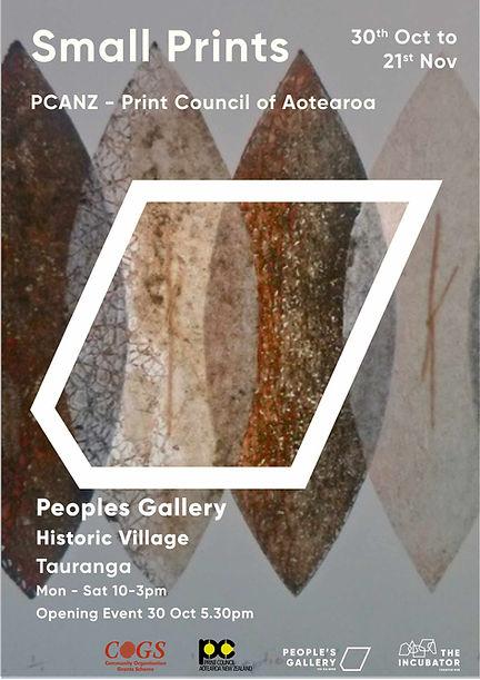 PCANZ Flyer.jpg