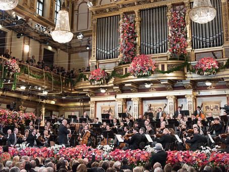 Day 292 - New Year in Vienna