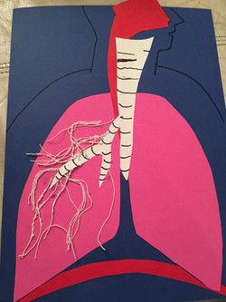 Respiratory System Paper Cut Out