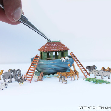 Noah's Ark_1 - Steve Putnam Designs.jpg