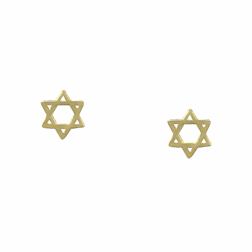 Star of David Earring (Gld or RsGld)