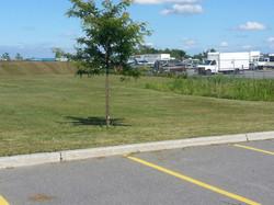 CLC 2 Acre Lawn