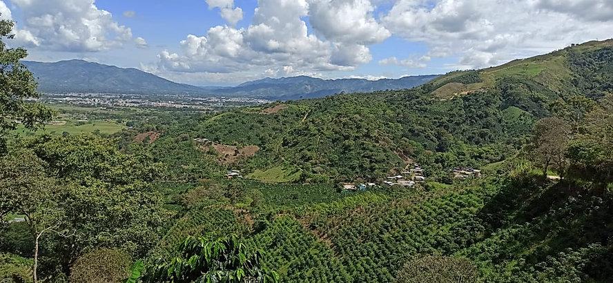 Pitalito - Huila