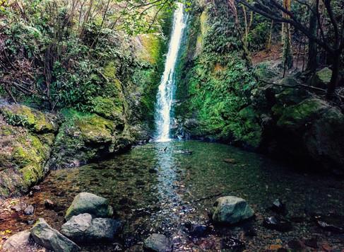 Kaikoura Falls (iPhone 6)