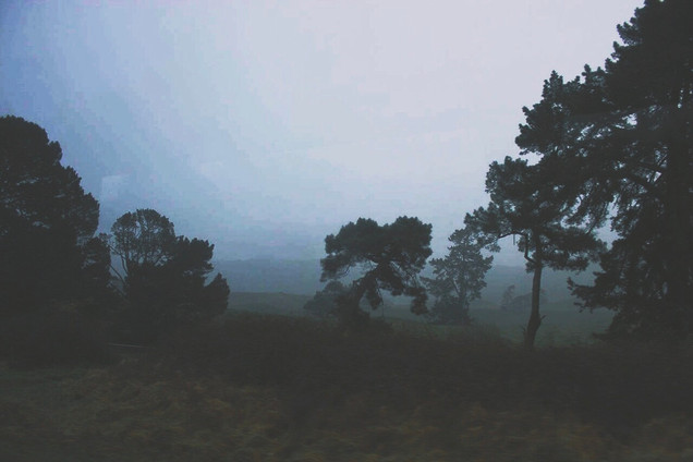 Misty Farmland (Canon 550d)