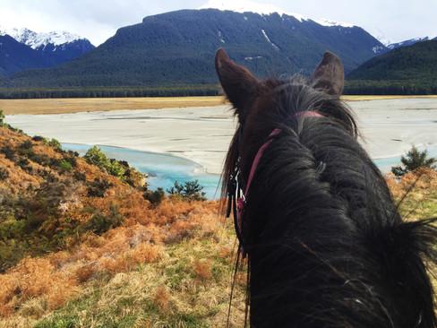 Horseriding through Paradise, Glenorchy (iPhone 6)