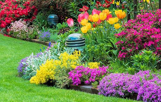 flowers-bg.jpg