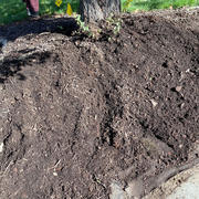 Ground Before