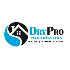 drypro.png
