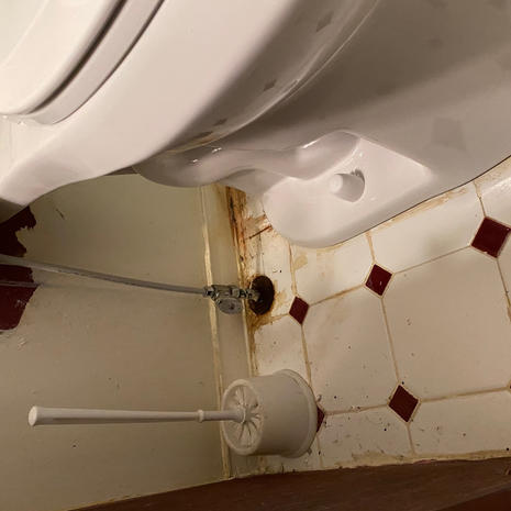 Toilet Under After
