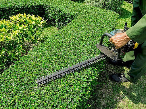 mowing-2.jpg