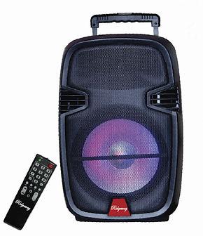 Ridgeway Model QS-J1203 Rechargeable Bluetooth DJ Speaker with lights & mic-10 inch
