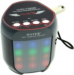 Mini Speaker WS-Y92B
