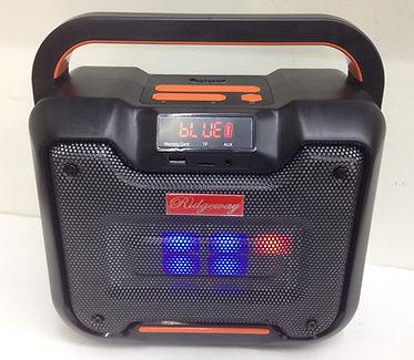 Ridgeway QS-659B BT LED Speaker