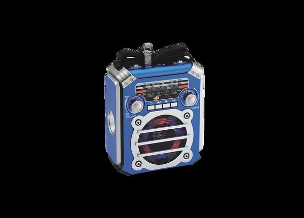 Dholpin-sp-406BT-blue