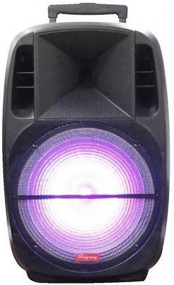 Ridgeway QS-3315BR Rechargeable Bluetooth DJ Speaker - 15 inch