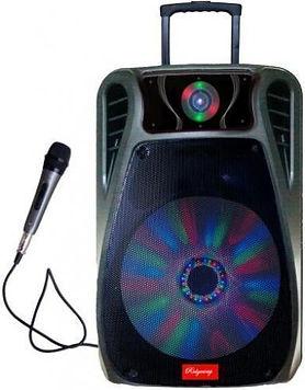 Ridgeway Model QS-1211B Rechargeable Bluetooth DJ Speaker with lights & mic-12 Inch
