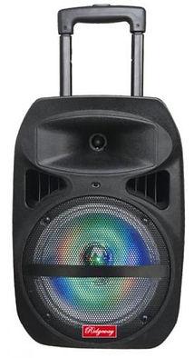 Ridgeway Model QS-817  Rechargeable Bluetooth DJ Speaker with lights & mic-8 Inch