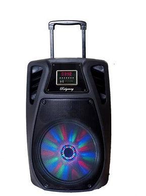 Ridgeway QS-1021 Rechargeable Bluetooth DJ Speaker with lights & mic-10 Inch