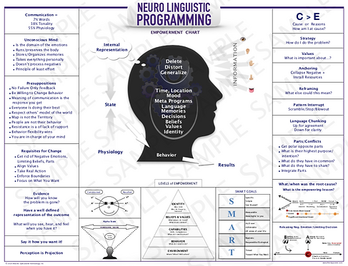 "The NLP Poster  -  18"" x 24"" Laminated"