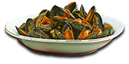 MOULES 1.png