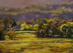 Kangaroo Valley XVIII. 9x12in