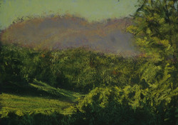 Kangaroo Valley XX.  6x8in