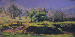 Kangaroo Valley XIX.  6x12in