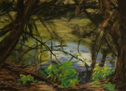 Peppers Creek.  9x12in