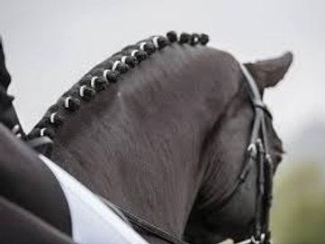 Aros elásticos diamantes para crines caballo y poni