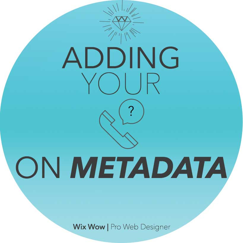 the pros and cons of adding your phone on metadata | Wix Wow | Pro web designer