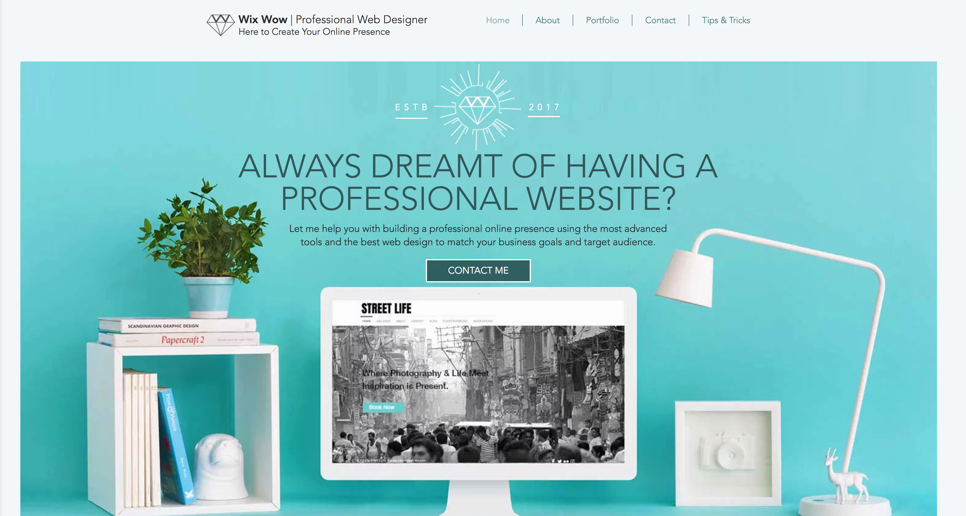 Professional Web Design Book