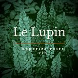 Logo Lupin.png