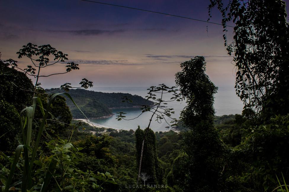 Camburi at the dawn