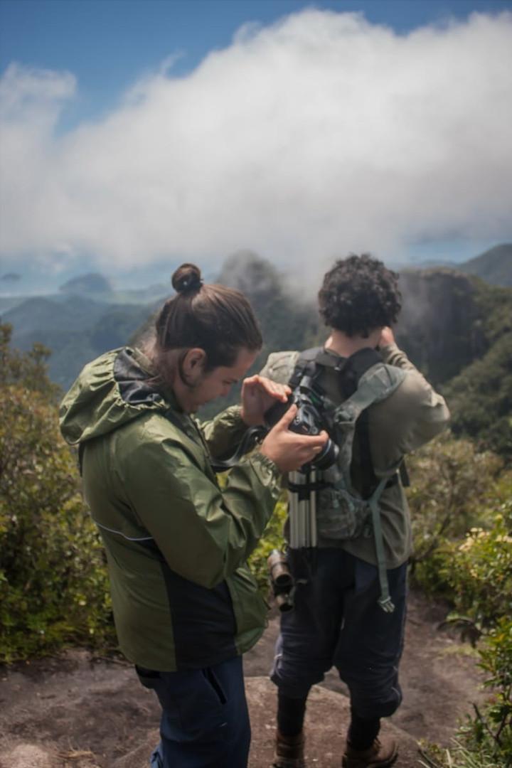 Rainforest Highlands