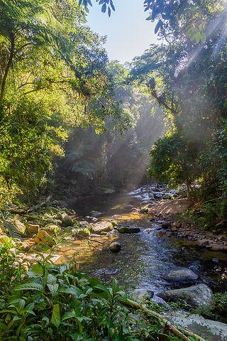 Rio Fazenda Ubatuba