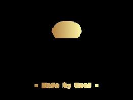 dark_logo_transparent (3).png