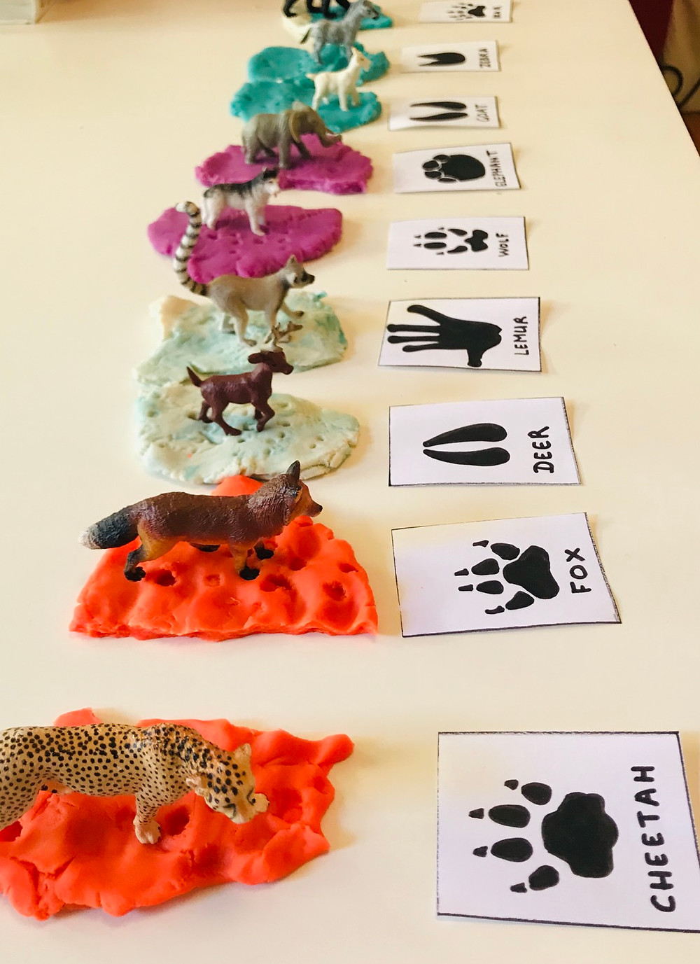 Animal toys and footprints
