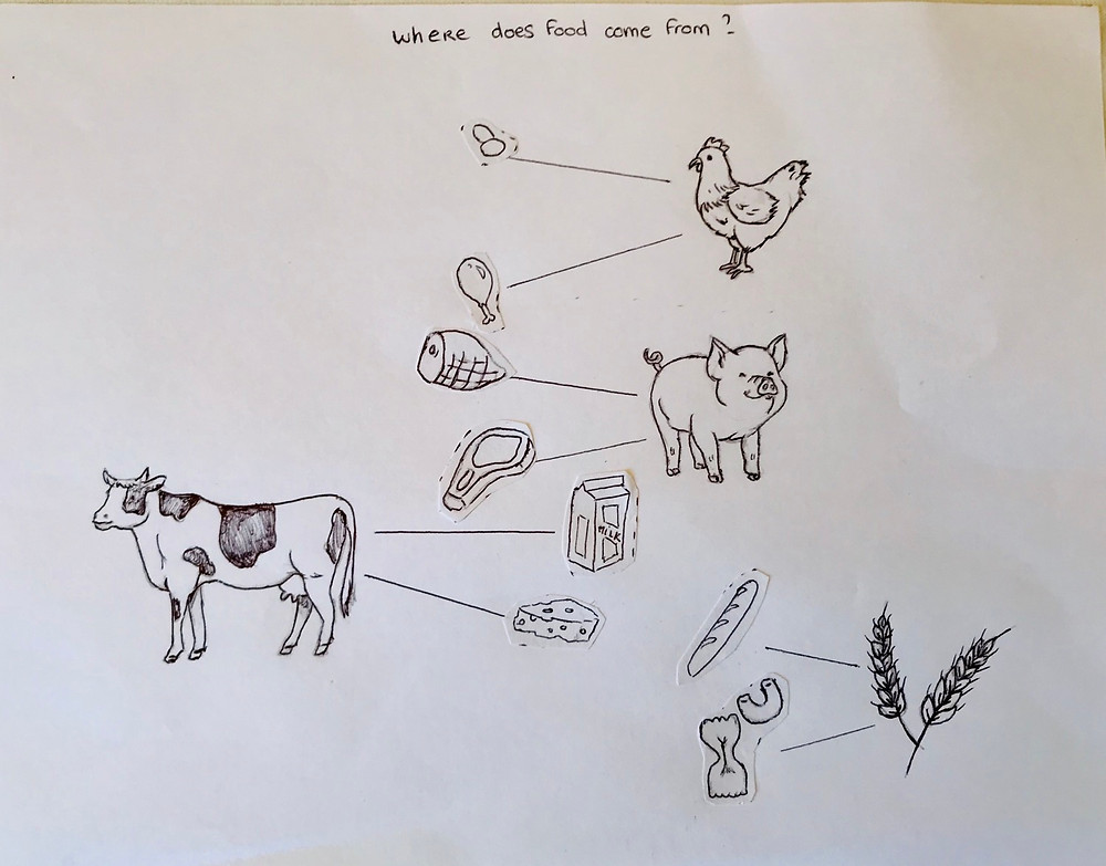 Placing the right food item on each line