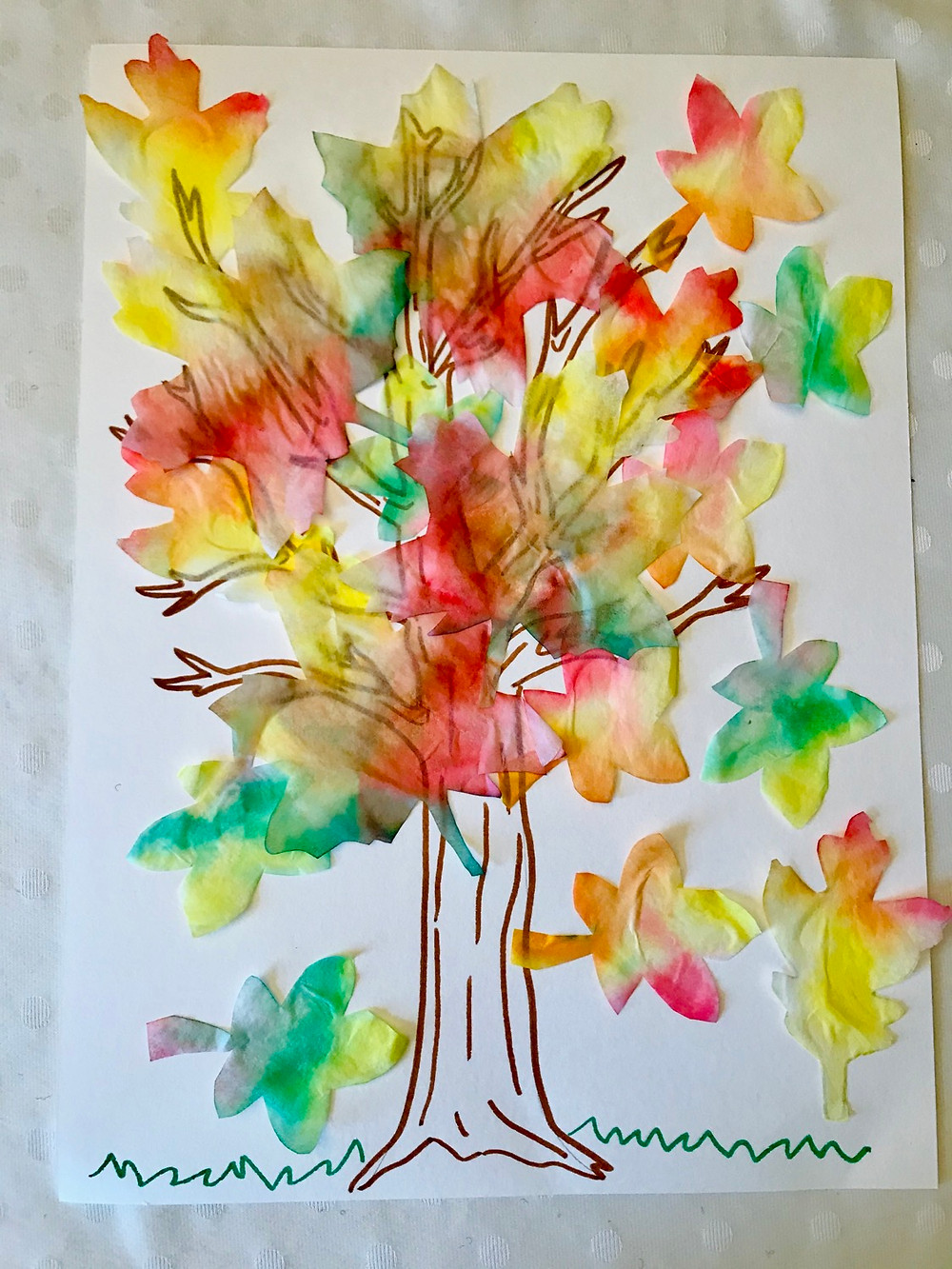 Beautiful tree with fall colored leaves