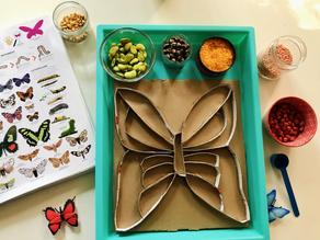 Butterfly sensory tray