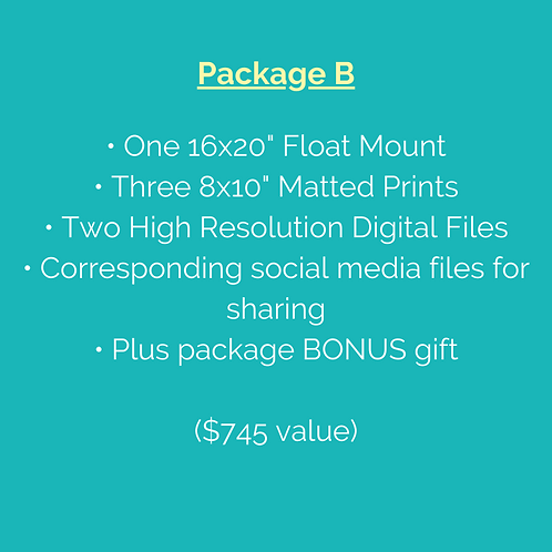 "Package B (Note: Pre-purchase not required but includes additional 8x10"" Print)"