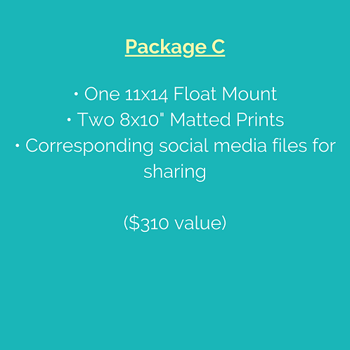 Package C (Note: Pre-purchase not required.)