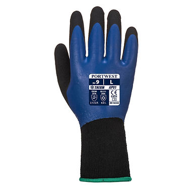 Thermo Pro Glove EXAP01