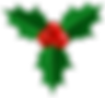 Christmas_Holly_PNG_Image.png