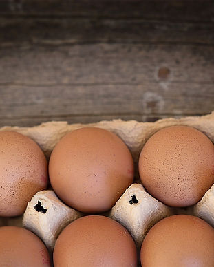 egg-1262868_1920_edited.jpg