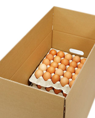 Überkarton Eier.jpg
