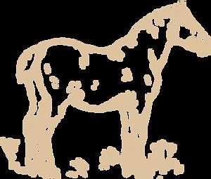 animal-1296671_960_720%20b%C3%A4sch_edit