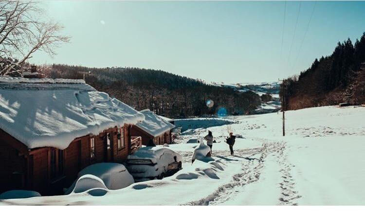 Snow at the log cabins